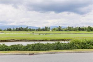 温哥华买房推荐,匹特草原,North Meadows