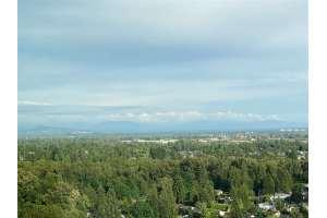温哥华买房推荐,高贵林,New Horizons