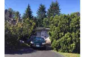 温哥华买房推荐,南本拿比,Forest Glen