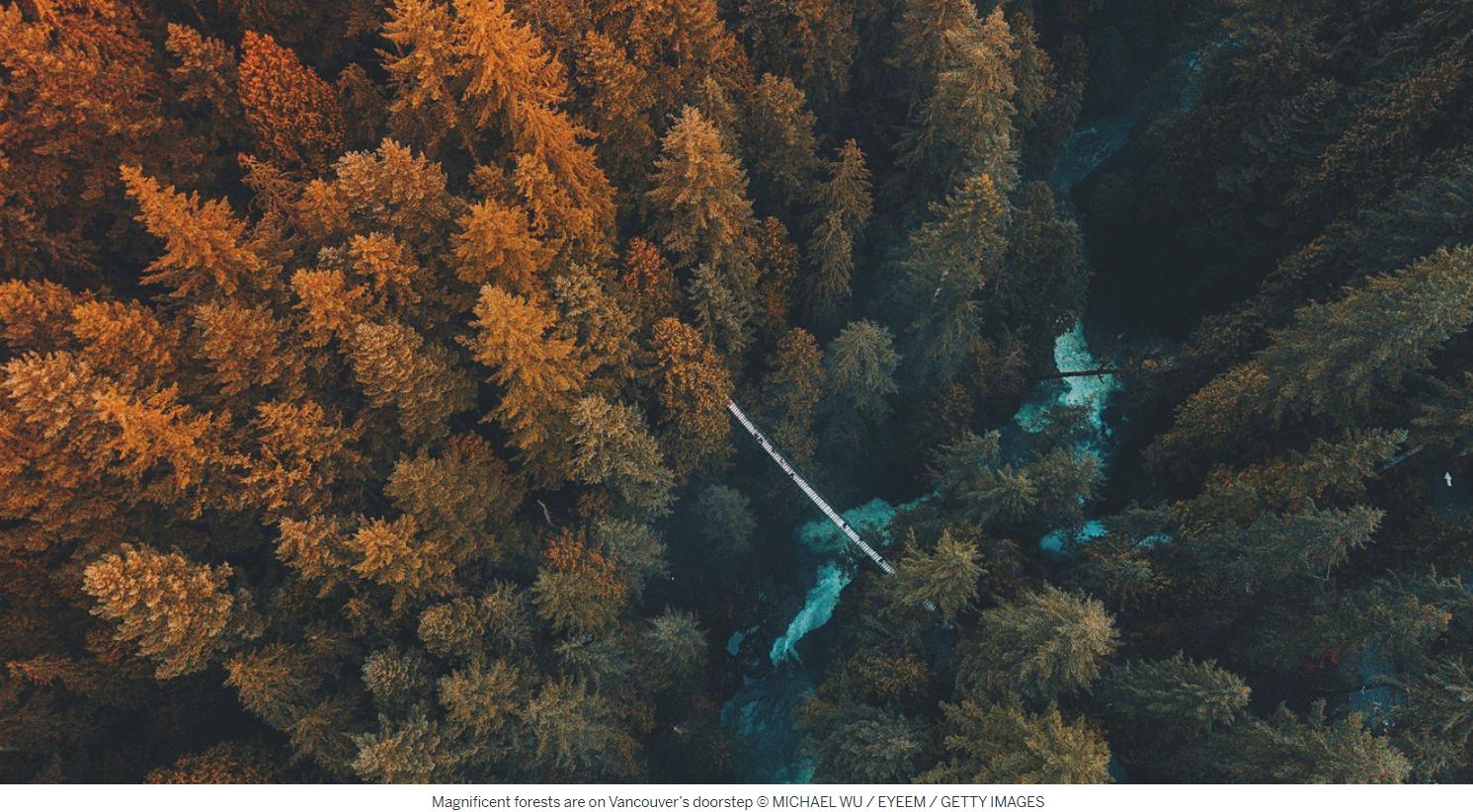 """国际旅游指南《孤独星球LonlyPlanet》最近刚刚公布""""2020年最值得游览的十大城市""""榜单,温哥华位列其中之一。排名着眼于拥有可持续旅行体验的最佳目的地和旅程,这意味着可持续发展和环境倡议等因素也被考虑在内。温哥华是唯一上榜的加拿大城市,也是北美仅有的三个城市之一。《孤独星球》亲切地将温哥华描述为""""一个天然的游乐场—被太平洋蓝色的海水和北岸森林所簇拥着。""""排名称,温哥华是1971年成立的环保组织绿色和平(Greenpeace)的诞生..."""