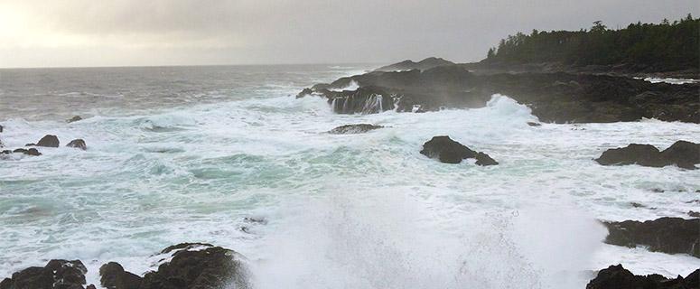 BC這個海灘,1月份的巨浪能拍死人!但大家又開始要去了……搞什么?